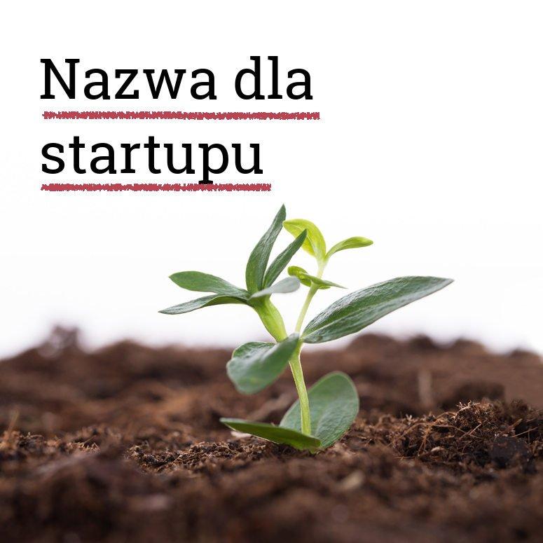 Nazwa dla startupu. Jaką nazwę wybrać dla startupu. Jaka nazwa dla startupu.