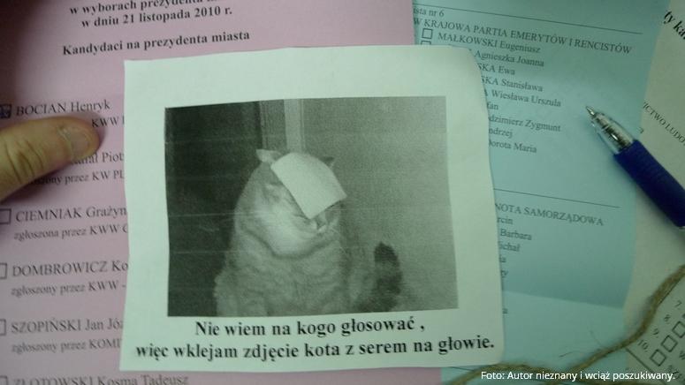 Oto więc co powiedział i napisał Grzegorz Berezowski na temat powstania CheeseCat i jej kotopodobnych usług