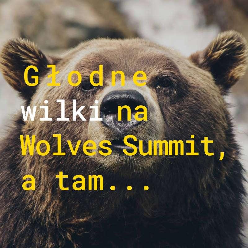 Wolves Summit skupia młode startupy, ciekawe pomysły, nowe inicjatywy