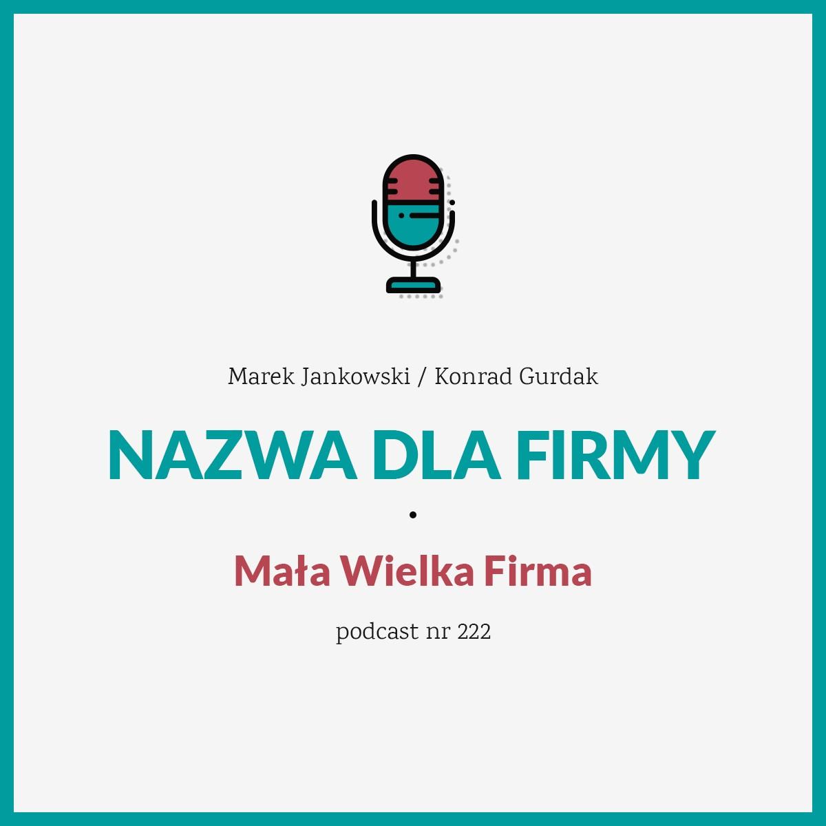 """Podcast nr 222 w Mała Wielka Firma """"Nazwa dla firmy"""""""