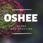 Oshee nazwa abstrakcyjna – Syllabuzz.pl Naming+Strategia